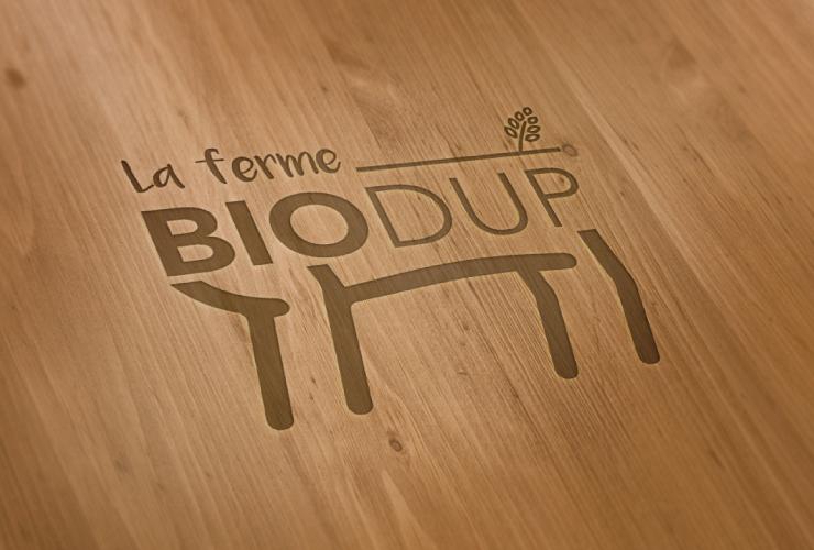Portfolio-Biodup-logo